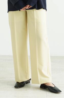 mite darts slacks pants