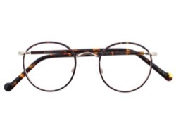MOSCOT ZEV TORTOISE GOLD