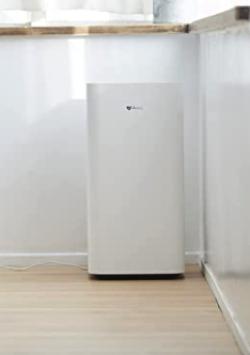 家族募集します・インテリアホワイトの空気清浄機