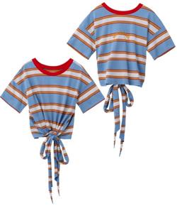 ブルーのボーダーTシャツ