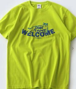 ライトグリーンのTシャツ